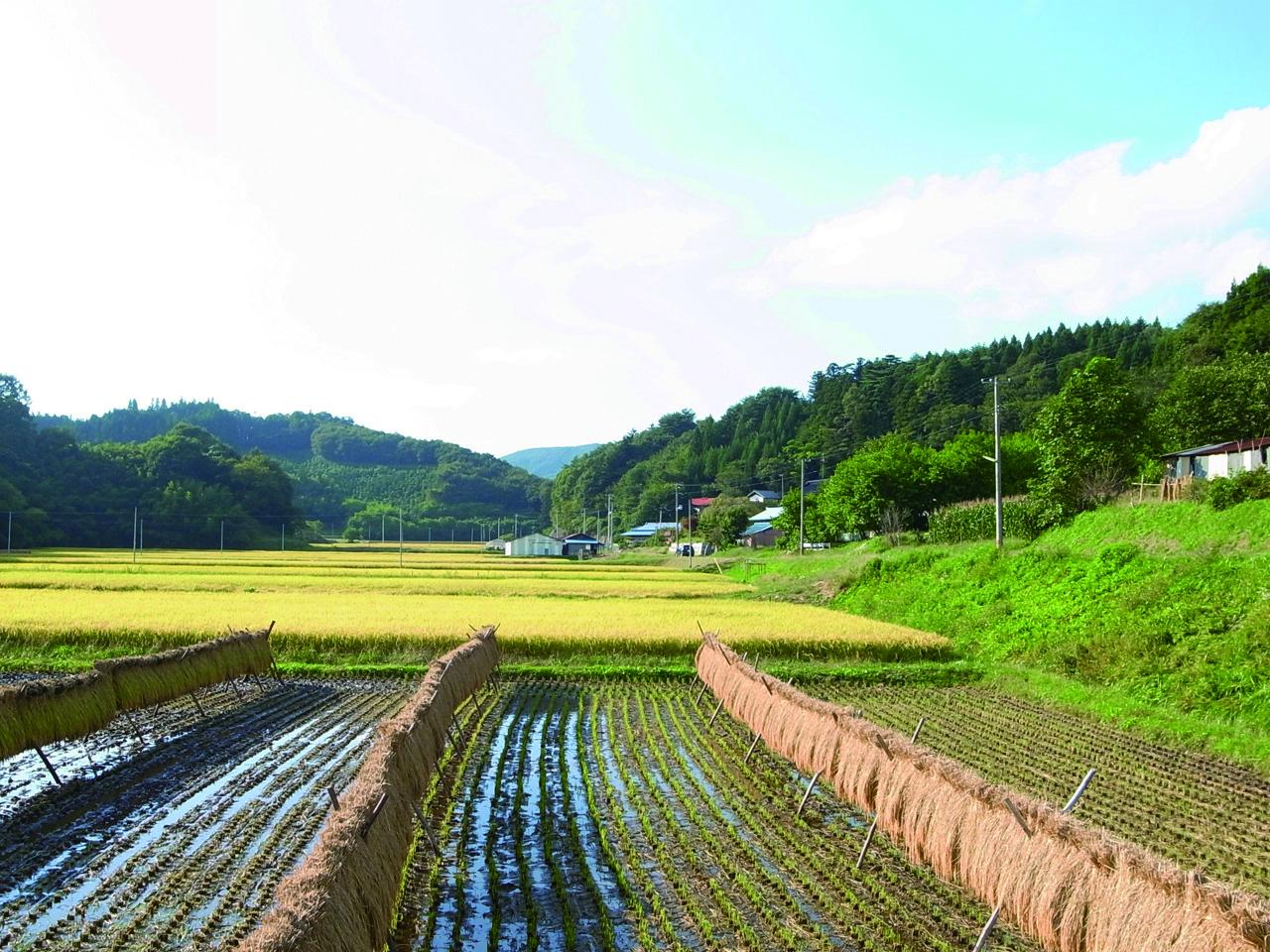 都路町住生活基本構想(2014)